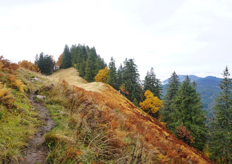 Alpstein Wanderung